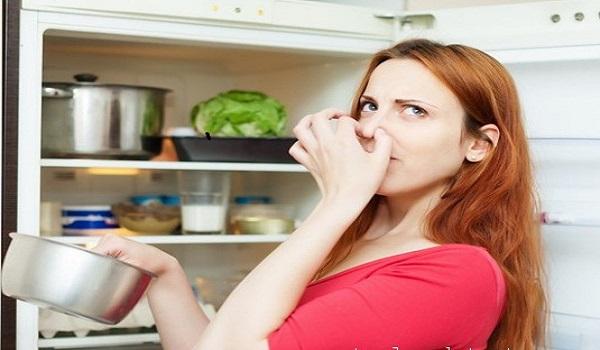 Tại sao tủ lạnh lại có mùi hôi?